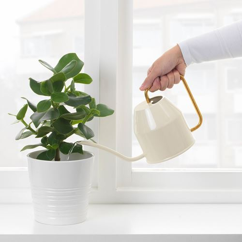 VATTENKRASSE,watering can